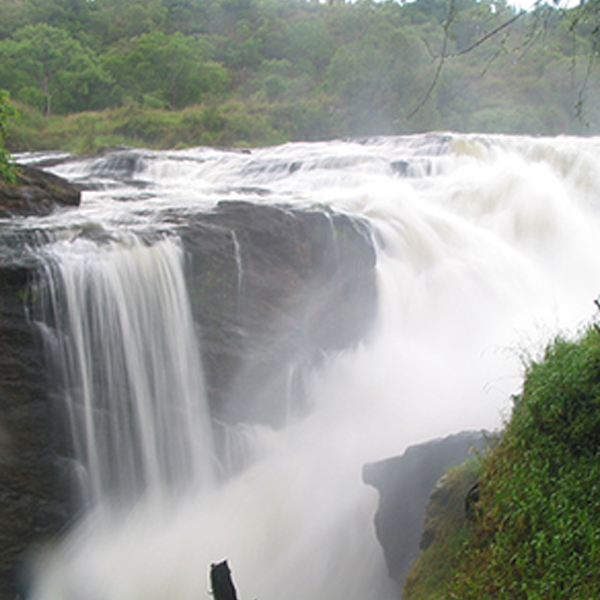 10 Days Uganda Safari to Murchison Falls National Park to Lake Mburo National park