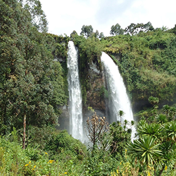 Mountain Elgon hiking tour and white water rafting