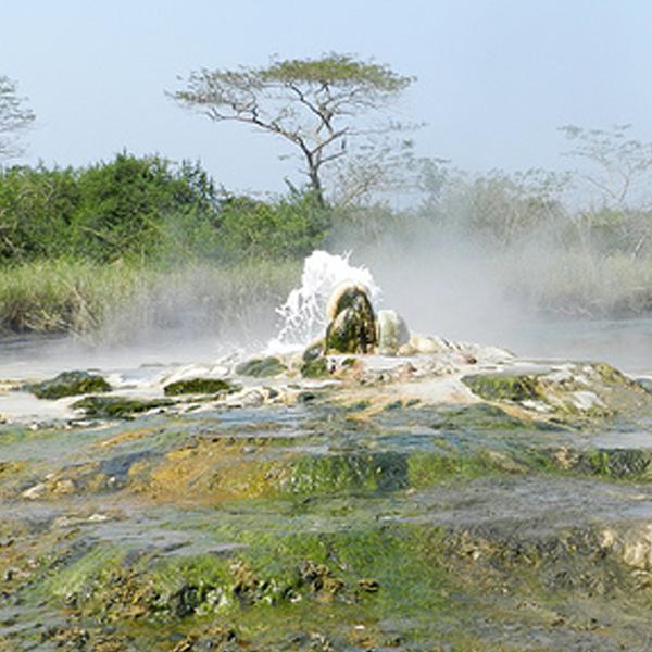 Uganda Wildlife Tour to Semiliki National Park
